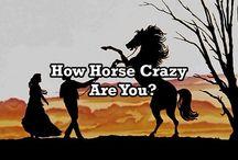 Horse riding / Horseeeeees
