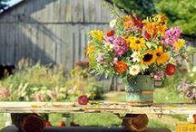 Aki a virágot szereti/ Flowers for any time / Virágok mindenkor és minden mennyiségben.