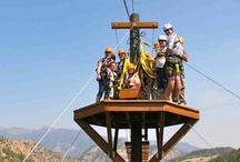 Yellowstone ZipLine & Canopy Tours / See the Yellowstone Ecosystem from a different perspective on a ZipLine Tour! Fly over a river, soar down a mountainside, sway in the treetops, balance on swinging sky bridges at one of our two zip line courses. Four tour options offered at two locations near Yellowstone Park!