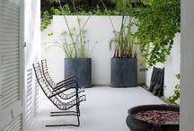 Balkon/ tuin/planten