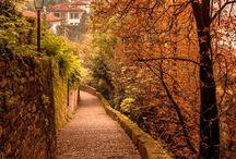 Cozy Autumn - Fall