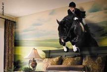 horse jumping / se avete voglia di stare con il fiato sospeso e vedere la bellezza dei cavalli saltare .......  cliccate segui bacheca