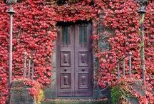 Doors / Random, quirky, colourful doors