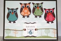Animal Cards & Projects
