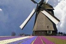 Nederland - Mijn Vaderland