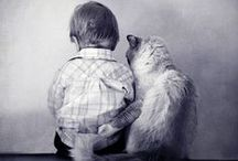precious pictures / adorable pictures... full of meaning