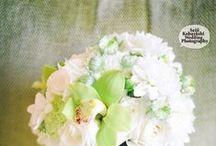 Photo by Koba -san / Kobaーsanが撮ってくれたお花の写真です。