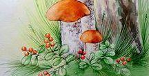 грибная полянка в лесу