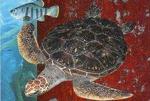 черепахи и другие земноводные и рептилии