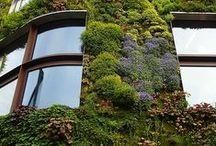 Outdoor Spaces / New ways to incorporate green space within our growing society