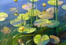 aquatic plants and water lilies
