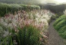 Gardens & Outdoor Spaces  / Because we all need a little fresh air. / by Christian Wells