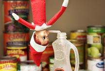 Elf on the Shelf / by Barb Lynch