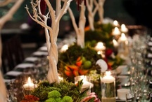 Table Setting / Make your table look interesting / by Deanna Fitz
