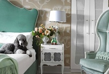 Cute Pets in Beautiful Homes / by House Beautiful Magazine