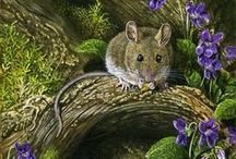 My favourite wildlife art