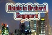 Hotels in Orchard Singapore / The department of tourism is quite known nowadays for the prosperous adventures available for a wide sector of people in the society. http://www.hotelorchard.com/
