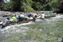 Suriname expeditions / We provide remote expeditions in unspoiled uninhabited Amazon rainforest.