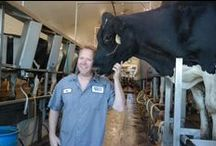 Hoo-sier Dairy Farmer? / Indiana Farm Families