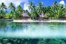 Paradise <3 / someday :B