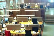 ERIBA Groningen / Office workstations are 'like a large staircase', connecting the laboratory floors. Very effective! European Research Institute on the Biology of Healthy Ageing.  In Groningen, the Netherlands.