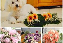 Cindy's Flower Arrangements