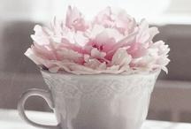 Peonies - my favourite flower