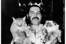 Famous Pets / & their owners