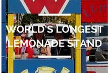 World's Longest Lemonade Stand / Breaking the Guinness World Record of the World's Longest Lemonade Stand Dare to Care raised $182,000 Sept 18, 2014.    The 357 stands were donated to AARCS (Alberta Animal Rescue Crew Society) to be turned into dog houses.