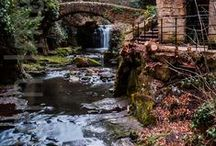 Out and about in Jesmond / Stunning photos from around Jesmond