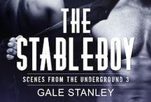 The Stableboy / Inspiration for book 3 of the series / by Gale Stanley