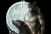 Humanoidy - Wilkołaki / Psowate
