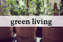 Green Living / Ways to go green everyday!