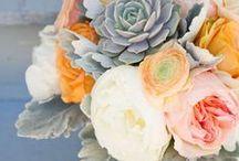 La beauté florale / Élégantes,  extraordinaires, colorés, transgénérationnelles, uniques  La nature est un chef d'oeuvre
