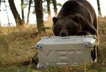 Yeti coolers / Love the ice