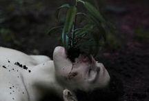 photography - Ben Zank  / .