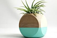 sweet little planters / sweet little indoor planters **collection by the planter pod**