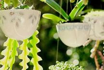 hanging planters / hanging planters **collection by the planter pod**