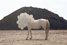 Inspiration / Inspiration, horse, balloons, people,
