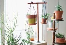 terracotta planters / terracotta indoor planters **collection by the planter pod**