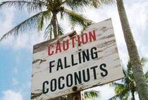 kokos, coco