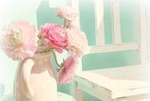 Pink and Sugar ♥