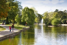 Birmingham Parks / Blanket? Check. Basket? Check. Sunshine? Check. Location? Take a look here...
