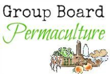 Permaculture for Dummies / A board for all things permaculture!  Please join us as we learn more about this method of gardening and food production.