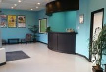 Our Grooming Salon / Our grooming salon