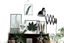 Home / Home decoration ideas, DIYs, basically everything that belongs to home
