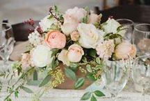 Vintage esküvő / Inspiráció a tökéletes vintage esküvőhöz. Kollekció mindenről, amire csak szükséged lehet a romantikus hangulat megteremtéséhez: vintage dekoráció, asztaldíszek, menyasszonyi csokrok, esküvői ruhák... | Válogass vintage kellékeink közül itt: eskuvoidekor.com/sct/560031/Vintage-dekoracio-fa-termekek