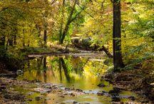 PHOTO | Landscapes / Beautiful landscape photos.
