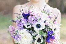 fiolety i róże