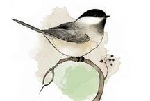 ▸ Love Birds